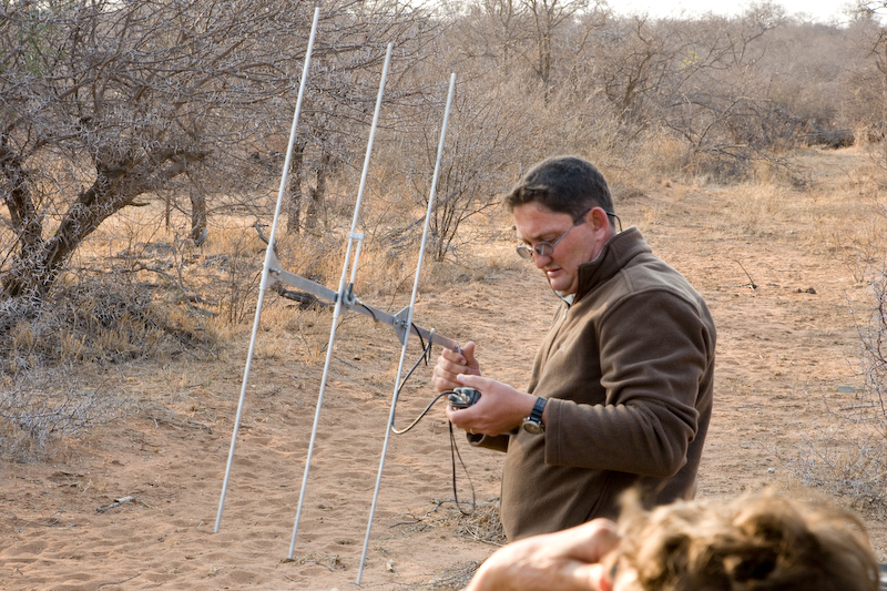 """Head Ranger Wendel Hough tracks """"Savannah"""" the cheetah.   His extraordinary knowledge of wildlife added a huge amount to our enjoyment of the Big Cat Reserve."""