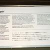 Auckland War Museum - Maori building information