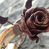 erikapozsar.com-290797.jpg