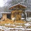 erikapozsar.com-290772.jpg
