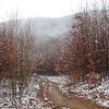 erikapozsar.com-290793.jpg