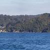 Stewart Island Daytrip