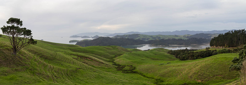 Coramandel Coastal Lookout