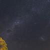 Night Sky in Pahia