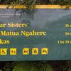 Waipoua Forest walks