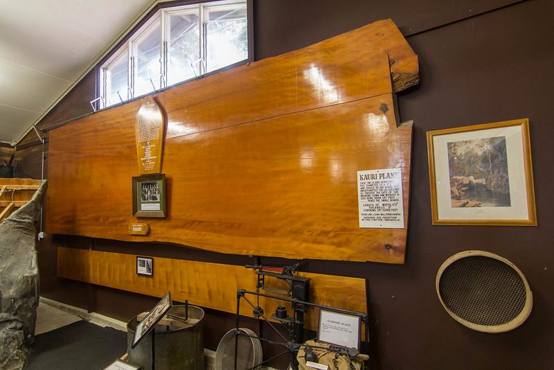 The Kauri Museum