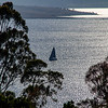 Sydney to Hobart yacht