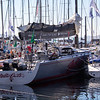 Sydney to Hobart fleet is in!