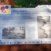 Maya townsite history
