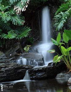 Gardens Point Waterfall