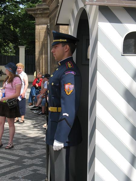 Standing Guard - Prague Castle