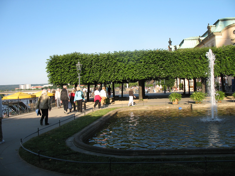 Bruhl's Terrace (Dresden)<br /> Linden trees on the bank of the Elbe River