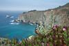 Monterey-Big Sur_20120508  029