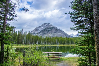 Picnic Table - Spray Lakes Reservoir
