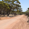 Kwolyin - Entrance Road on Quairading - Bruce Rock road