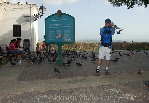 Parque des Palomas (Pigeon Park)