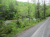 Cranberry River.... Upon arrival at the 101/76 stock truck hole Saturday..... May 5th.... There was a crowd. So we drove over the top to Dwyer on Williams.