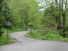 Forest Service Route 76 down to Cranberry River. Friday morning May 4th.