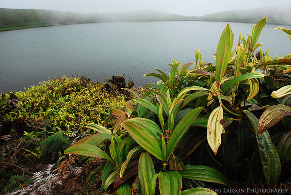 Junco Lagoon, San Cristobal, Galapagos Islands