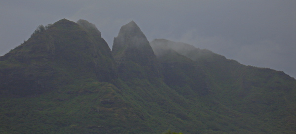 Our first drive up to the north coast of Kauai.