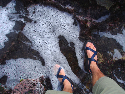 Tide pool along the lithified sandstone cliffs east of Shipwreck Beach.