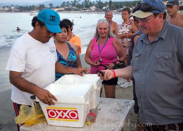 Mexico Sea Turtle Release  004