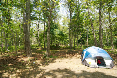 Rates are 24.00 a day for up to 1 week on a first come basis. The activities available at Cedar Point include: Fishing, hiking, picnicking, camping, playground, rowboat rentals, bicycling, saltwater fishing, scuba diving, hunting, outer beach access. General Store and Snack Bar (631) 324-7147.  http://www.co.suffolk.ny.us/webtemp1.cfm?dept=10&id=881