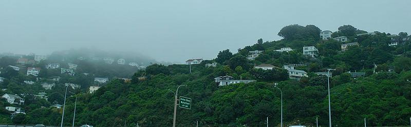 Hillsides above the harbor in Wellington.