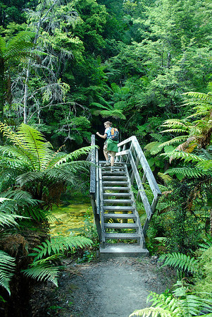 Crossing a stream. Abel Tasman NP.