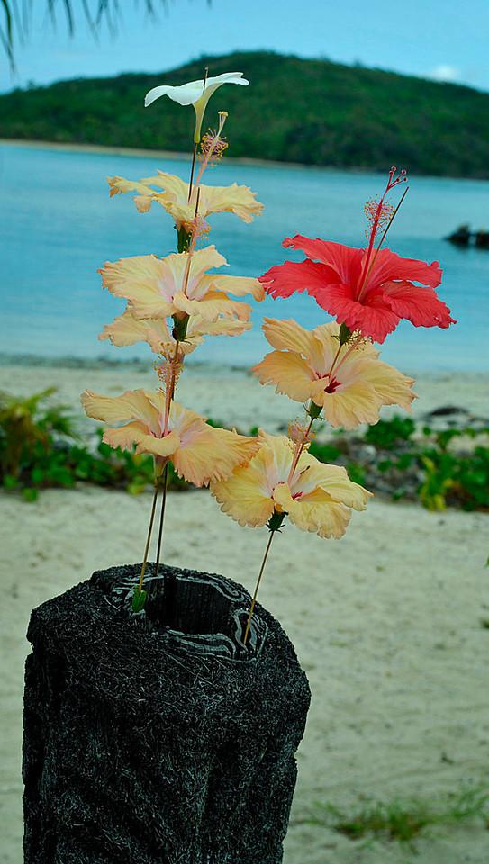 Navutu Stars, Yaqeta Island, Fiji.