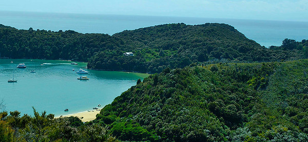 Abel Tasman National Park on New Year's Eve.