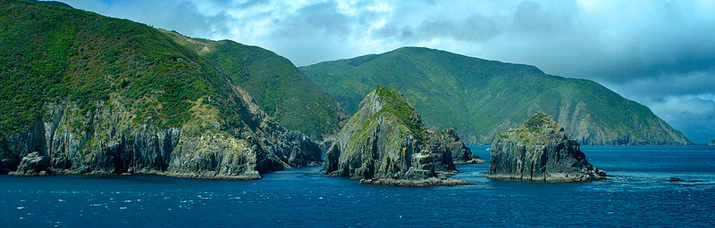 The north shore of the south island from the Interislander ferry.
