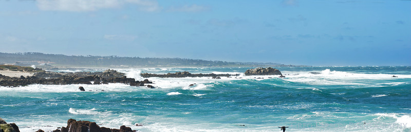 Pacific Grove Coast, California