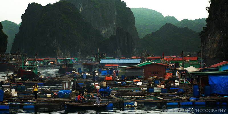 Floating Village, Ha Long Bay, Vietnam.