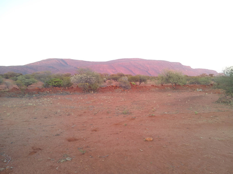 Sunrise at Mt Augustus Outback Station