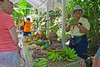Our tour guide telling us about different fruits and vegetables of the island