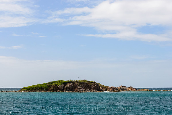 We got to see a lot of coastline while we took the 45-minute ferry ride to Cruz Bay in St. John