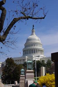 U. S. Capitol Dome