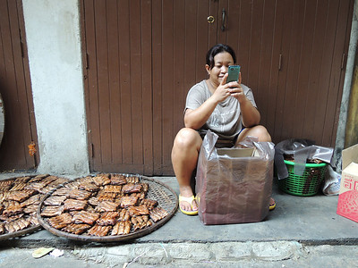 A woman selling dried fish in a market outside Wat Po, and playing on her iPhone.