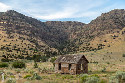 Steens Cabin