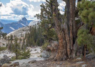 2018 Yosemite October