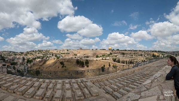 View of the Old City of Jerusalem from the Mt of Olives