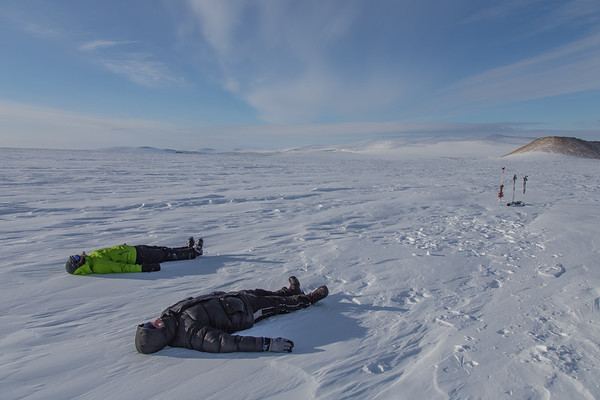 Too much land ice for these sea ice guys...