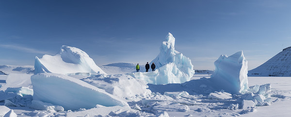 A view of them on the entire iceberg