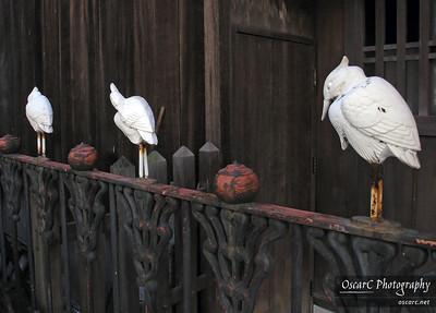 Dogo Onsen herons