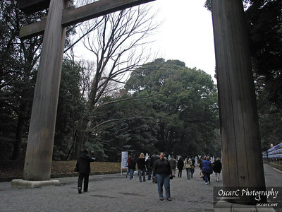 Entering the Meiji Shrine