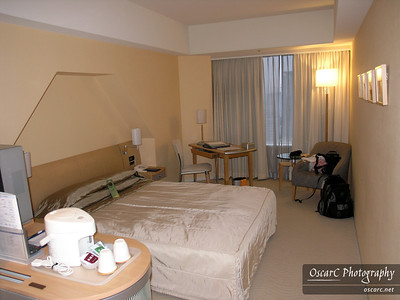 My room at the Tokyo Dome Hotel