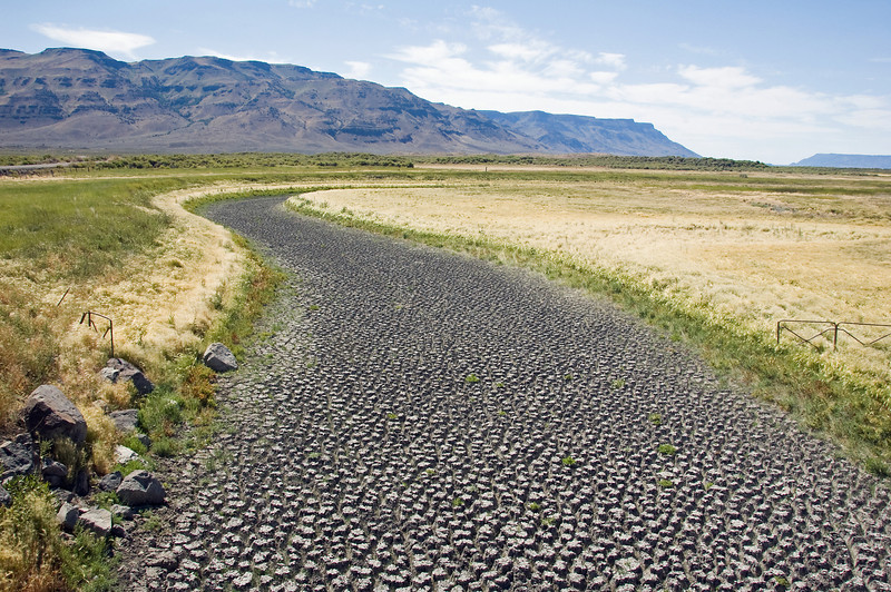 A dry river bed in the Warner valley.