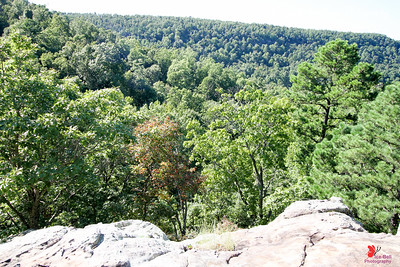 20160918-Ponca Arkansas Area - Hideout Hollow Trail - 08w