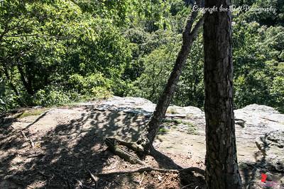 20160918-Ponca Arkansas Area - Hideout Hollow Trail - 13w